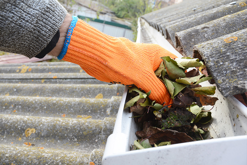 Gutter Cleaning, Gutter Cleaning Services